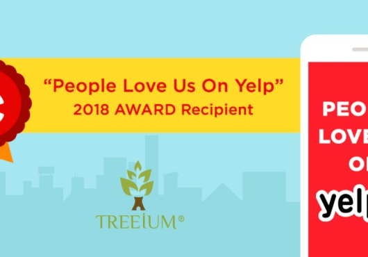 "Treeium Feels The Love In The Air ""People Love Us On Yelp"" Award Received"